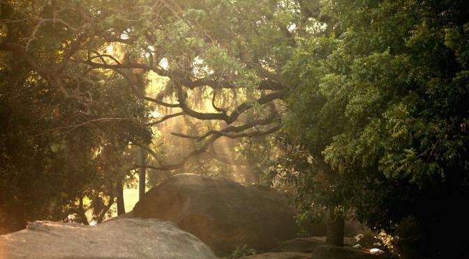 01_Mahabalipuram 4