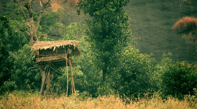 Tribal Architecture_Kerala (4)
